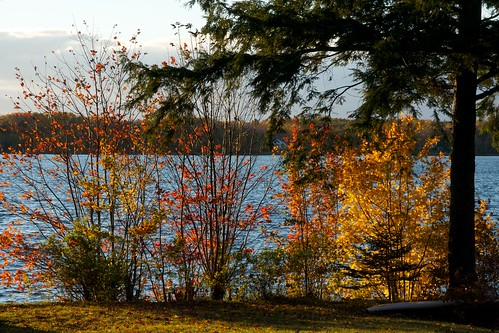 Fall at Fancy Lake