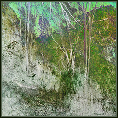 Autumn Hill. (Tim Noonan) Tags: digital photoshop texture colour hue green grey forest hill trees leaves scrubbed sky turquoise pale branches awardtree shining maxfudge shockofthenew vividimagination exoticimage artdigital hypothetical netartii maxfudgeawardandexcellencegroup magiktroll mosca greenscene digitalartscene sharingart vividnationexcellencegroup stickybeak
