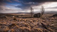 Rannoch Moor (Joe Dunckley) Tags: uk winter landscape scotland highlands frost rannochmoor westhighlands