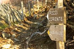 Pozzi, L'Oriente