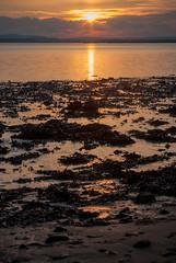 coucher du soleil (1 other people) Tags: uk winter sunset england seaweed beach strand soft pentax shoreline filter shore 09 lee dorset nd grad graduated wrack pooleharbour neutraldensity hamcommon hamworthy k10d grahamhobbs