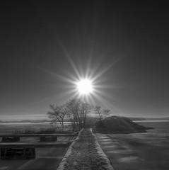 Swedish archipelago.(Explore) (Robban.G) Tags: winter light bw sun sunlight snow cold tree ice water island vinter nikon sweden swedish sn archipelago d800 swedishswedish