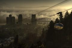 Into the Fog at Dawn (jamzik) Tags: mist fog oregon sunrise portland photography dawn al award tram aerial bin international mohammed cablecar tramway rashid maktoum hamdan oshu hipa