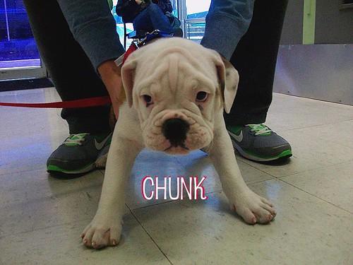 chunk1