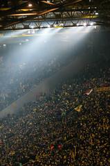 BVB2013 -  -5773 (clickraa) Tags: fans dortmund westfalenstadion borussia fusball signalidunapark tribne bvb09 germansoccer fusballfans