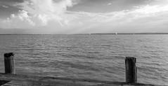 Navegando por el lago (Jo March11) Tags: austria neudsiedlamsee sterreich lago veleros cielo agua blancoynegro monocromo monocromtico ieletxigerra idoiaeletxigerra eletxigerra canon canoneos neudsie neudsiedlersee nwn