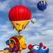 International de montgolfières de Saint-Jean-sur-Richelieu 48