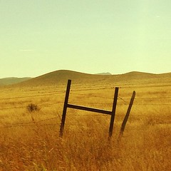 (danielhuiting) Tags: hi texas field grass wheat golden sky fence barbed wire iphone instagram