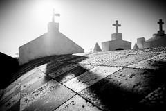 Deadly chess (steff808) Tags: france francia corse corcega corsica bonifacio cimetierre cimetierremarin cementerio cemetery fujifilmxe2 fujinon1024 blackandwhite blancoynegro bw biancoenero noiretblanc