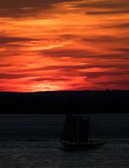 Sunset in New York (mrsimonlion) Tags: ny nyc new york sun set sunset ocean clouds fall sail ship sailing brooklyn manhattan downtown 7d canon mk ii mark 70200 70 200 f28