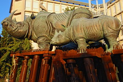 "Ancona, Marche, Italy - ""Mater Amabilis"" 2 by Gianni Del Bufalo  CC BY 4.0 (bygdb - Gianni Del Bufalo (CC BY)) Tags: materamabilisancona trubbiani rhino rinoceronte rhinoceros وحيدالقرن 犀牛 rinocero rhinocéros サイ neushoorn носорог nashorn viviamolemarche destinazionemarche"