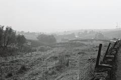 Bacup [September 2016] (lynnmariehall) Tags: olympus om10 ilford xp2 bacup pennines blackwhite monochrome analog film 35mm landscape hills hillside moors olympusom10