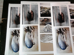 poster prints (Carolyn Saxby) Tags: stives beach artposters musselshells jarproject artwork porthmeor studios table display carolynsaxby