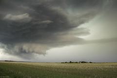 Orage violent (Prsage des Vents) Tags: indre issoudun supercell msocyclone supercellule wallcloud nuage mur orage storm beavercloud hail grle alex