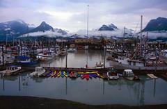 U.S.: Alaska: Valdez (mariofalcetti) Tags: unitedstates alaska valdez sea mare porto harbour seascape water acqua boat barca paesaggio landscape