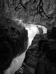 Black Linn Falls, River Braan (ShinyPhotoScotland) Tags: landwater waterfall light monochrome sharpsoft motionstationary landscape flowing pure awe turbulence nature manipulated enfuse toned scotland olympuspenf intimatelandscape sunlight camera zen darktable elegance simple rockwater rawconversion contrasts rawtherapee motion highlands digikam blackandwhite moment meandering slowfast perthshire thehermitage olympus1260mmf28 dunkeld hdr lens places raw blacklinn lightanddark lines motionblur equipment photography water striking art composite blur naturehappens sumptuous emotion shapeandform dynamic unitedkingdom gbr
