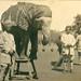 Elephant tricks