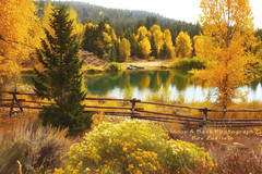 Waiting ... (Aspenbreeze) Tags: autumn trees lake reflection fence pond wyoming autumntrees rowboats falltrees lakereflection thegalaxy reflectioninlake aspenbreeze bestevergoldenartists gpsetest