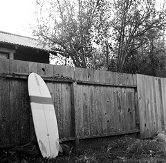 5'6'' mini-simmons + keel-zer (keel twinzer) + canard + channels = Simzer, santa cruz, september 2012 [#028012] (Jeff Merlet Photography) Tags: california wood city bw stilllife usa santacruz sun tree 120 6x6 film home grass leaves sport analog fence mediumformat square blackwhite published surf day afternoon pacific kodak bokeh outdoor surfer board shed stripe twin overcast surfing september hasselblad riding negative 400 surfboard fin channel canard 2012 rfc keel rpl trix400 hasselblad500cm hassy scphoto twinzer 201209 carlzeissplanar8028 minisimmons richardphotolab 028012 thelanetowaddell jeffmerletphotography photojeffmerletcom santacruzboardbuildersguild keelzer r0280 roblyon royalsurfboard rpl1257