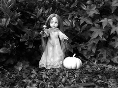 31 Days of Halloween 18 (welovethedark) Tags: halloween pumpkin doll iphone posey creepydolls livingdeaddolls iphonecamera photoshopforiphone