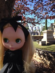 a day at the cemetery