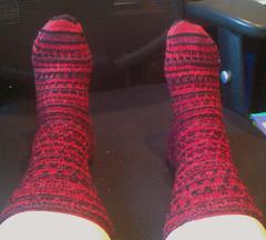 Siouxsie the Scylla Socks - Top (akkasha) Tags: socks knitting knit siouxsie scylla selfstriping tricote