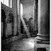 Luce di Antimo — Antimo's Light