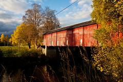 Covered bridge (estenvik) Tags: bridge autumn oktober fall colors norway hammer wooden october colours covered bro bru høst nordtrøndelag høstfarger høylandet estenvik erikstenvik overbygd