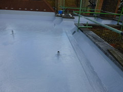 liquid rubber SD650 by 3m flat roofing 27