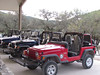 Texas Whitetail Hunt & Exotics - Kerrville 7