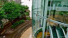Les jardins du passage du Havre dans le 9me arrondissement. (Zagreusfm) Tags: city urban paris france architecture jardin passage 9me