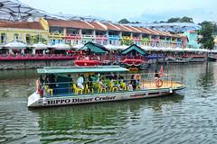 Singapore Hippo River Cruise