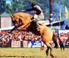 Firme en el basto (Eduardo Amorim) Tags: horses horse southamerica caballo uruguay cheval caballos cavalos prado montevideo pferde cavalli cavallo cavalo gauchos pferd hest hevonen chevaux gaucho 馬 américadosul montevidéu häst uruguai gaúcho 말 amériquedusud лошадь gaúchos 马 sudamérica suramérica américadelsur סוס südamerika jineteada حصان άλογο americadelsud gineteada ม้า americameridionale semanacriolla semanacriolladelprado eduardoamorim semanacriolladelprado2011 ঘোড়া