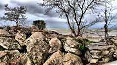 ~Rocky coast along Lake Ontario~ (~Sage~) Tags: wallpaper rocky top20nature top20landscape lakeontario supershot goldenhillsstatepark