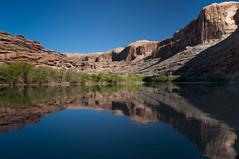 Colorado River Near Moab (Nolan Thornberry) Tags: utah desert coloradoriver moab southernutah archesnationalpark