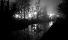 Coventry Canal (wetbicycleclappersoup) Tags: