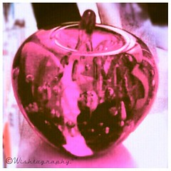 #AppleOfMyEye (Wishtography) Tags: apple beautiful awesome violet bubbles stunning appleofmyeye streamzoo szjunkies szaddicts