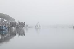 Just promise me that we'll be alright [+3] (MatteoTizioG) Tags: winter sea fog canon 50mm boat yashica fvg friuli friuliveneziagiulia maranolagunare canon550d