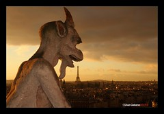 Notre Dame, Paris (DIAZ-GALIANO) Tags: sunset paris tower canon atardecer torre eiffel notredame 7d 2012 gargola otw diazgaliano mygearandmepremium mygearandmebronze mygearandmesilver mygearandmeplatinum ringexcellence dblringexcellence tplringexcellence ruby10 ruby5 ruby15