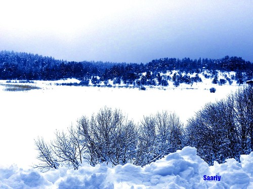 HERE IS FANTASTIC VIEW OF FROZEN LAKE ABANT & ITS SURROUNDINGS....