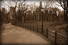 Central Park (B.G.Schultz-Photography) Tags: nyc newyorkcity nikon d7000