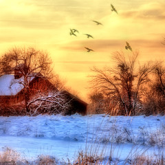 --brilliant winter morning-- (xandram) Tags: winter field barn photoshop sunrise manipulation tonemapped magicunicornverybest