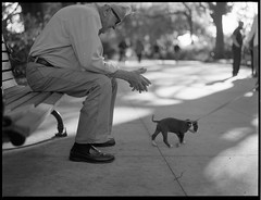 Old Friends (TheRobbStory) Tags: 120 film zeiss mediumformat puppy t 645 candid streetportrait oldman delta scan hasselblad pro dcist epson 100 v600 leash parkbench ilford f28 cf 80mm 500cm prontor a16back robbhohmann