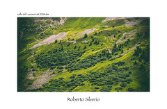 P7217436 (Roberto Silverio) Tags: nature landscape green mountain love olympuscamera zuikolens open