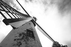 Wildmill (Eero Capita) Tags: windmill moulin ven brabant wallon belgium belgique black white bw nb nikon d7100 sigma 1020