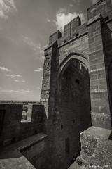 Carcassonne_20150810_1647 (Toche43) Tags: citdecarcassonne carcassonne cit blackwhite monochrome monument architecture aude languedocroussillon paysages paysrgion rempart
