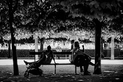 Back to back (Pierre Pichot) Tags: 6d back bench black blackwhite blackandwhite canon city europe france ignoring monochrome outdoor paris parisien park sit sitting street streetphotography streets symmetry travel trees triangle urban white iledefrance fra