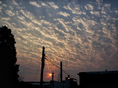 Sky - Buenos Aires (Fally Killradio) Tags: cielo clouds nubes skyporn cloudsporn landscape cloudscape skycollection cloudscollection fire trees barrio argentina atardecer sunshine sunset sol sun sunrise view scenery nature paisaje sky buenosaires lovely amazing photo photography lateafternoon