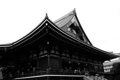 L1000531 (Zengame) Tags: leicat cc creativecommons japan leica summicron summicron235 tokyo  235  t     jp