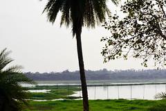 Scenery #lake